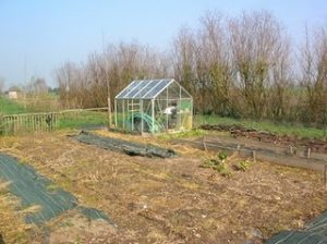 Vegetable patch in a French garden with greenhouse