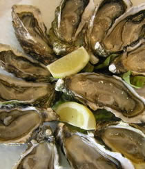 A few opened Breton oysters on a plate